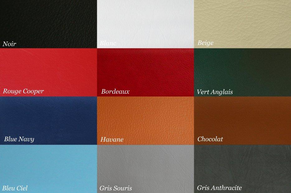 Panel de couleurs pour l 39 int rieur de la mini for Interieur en anglais